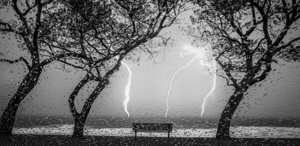 Lo scatto della fotografa australiana Kay Cypher, Better Photography Magazine Photo 2020 - Sputnik Italia