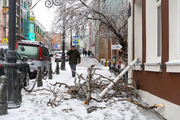 Le conseguenze di pioggia gelata a Vladivostok, Russia.  - Sputnik Italia