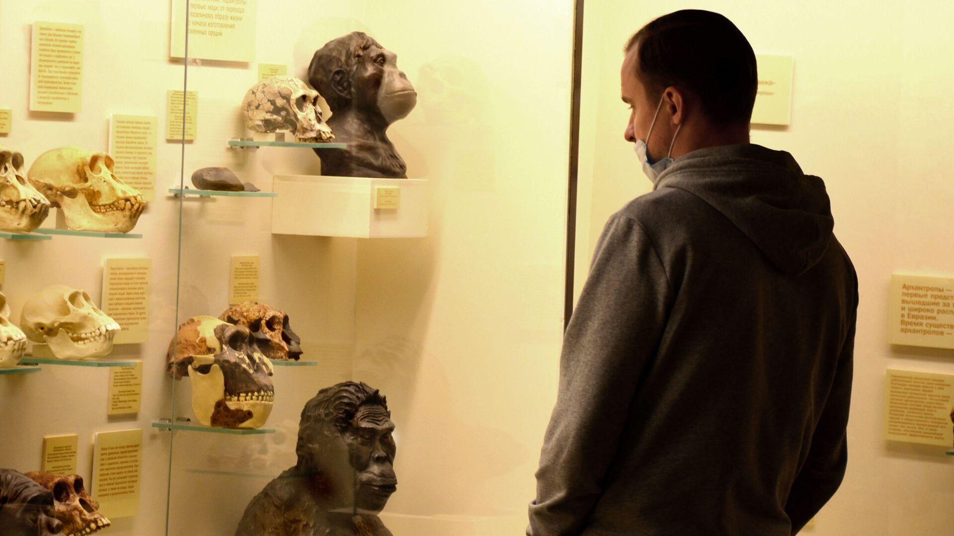 Coronavirus in Russia - novembre 2020, museo paleontologico - Sputnik Italia, 1920, 24.08.2021