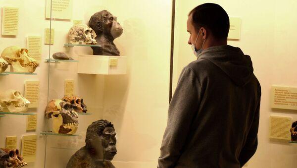 Coronavirus in Russia - novembre 2020, museo paleontologico - Sputnik Italia