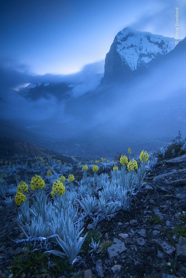 La foto del fotografo colombiano Gabriel Eisenband - Sputnik Italia