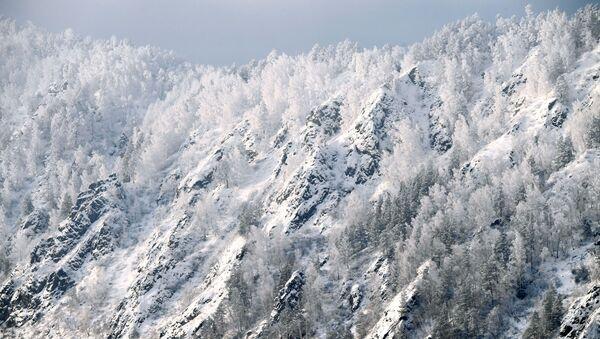 Покрытый снегом крутой таежный берег реки Енисей недалеко от города Дивногорска Красноярского края - Sputnik Italia
