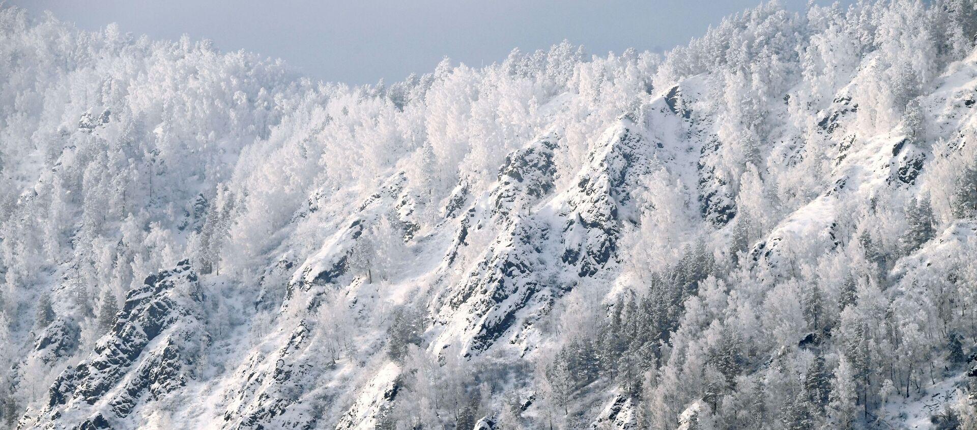 Покрытый снегом крутой таежный берег реки Енисей недалеко от города Дивногорска Красноярского края - Sputnik Italia, 1920, 29.11.2020