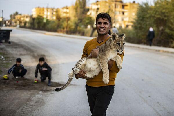 Curdo siriano con il suo cucciolo di leone - Sputnik Italia