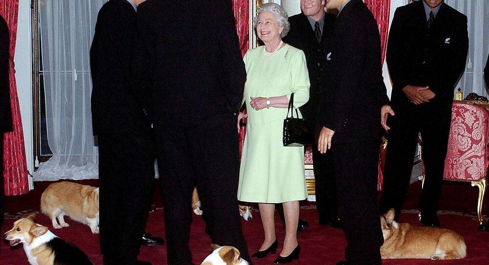 Regina Elisabetta 'in fila' per vaccino covid