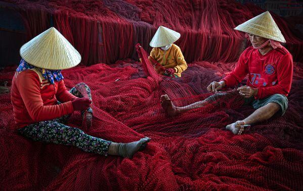 Lo scatto del fotografo vietnamita Ly Hoang Long, Earth Photo 2020 - Sputnik Italia