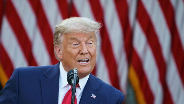 Il presidente degli Stati Uniti Donald Trump - Sputnik Italia