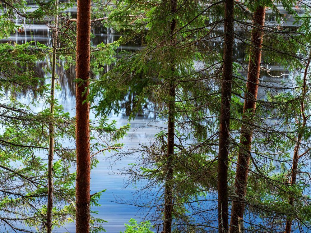 La Carelia, che si estende dalle coste del Mar Bianco fino al Golfo di Finlandia, è una vasta regione piena di fascino