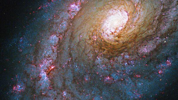La galassia NGC 5248 nella costellazione di Boote. Caldwell 45, o NGC 5248, è una galassia a spirale situata nella costellazione di Boote, è caratterizzata da una struttura ad anello attorno al suo nucleo, in cui si verificano fenomeni di intensa formazione stellare. - Sputnik Italia