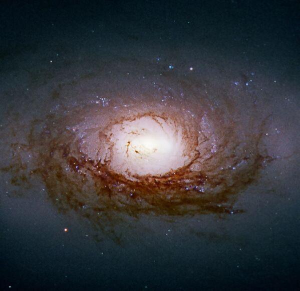 NGC 3626 (nota anche come C 40), galassia a spirale (S0-a) della costellazione del Leone. - Sputnik Italia