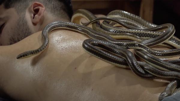 Egitto: fisioterapista pratica il massaggio con i serpenti - Sputnik Italia