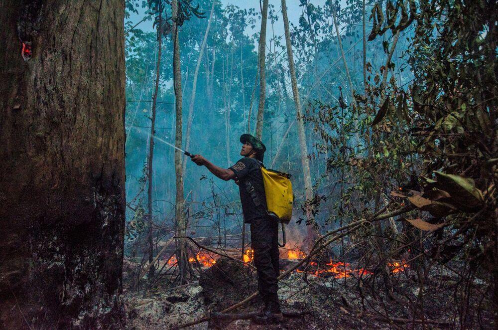 Gli incendi boschivi in Brasile