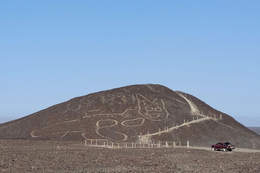 Il disegno di un gatto lungo 37 metri, vecchio di 2 mila anni, è stato rinvenuto per caso durante lavori di manutenzione nel sito archeologico di Nazca e Palpa, altopiano desertico del Perù meridionale.