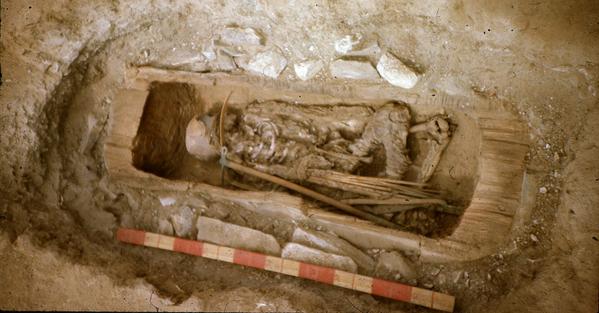 Grazie a un'analisi del DNA è stato confermato che i resti dell'antica guerriera scita ritrovati alla fine dell'anno scorso a Devitsa, nella parte occidentale della Russia, appartenevano a una giovane ragazza di 13 anni. - Sputnik Italia