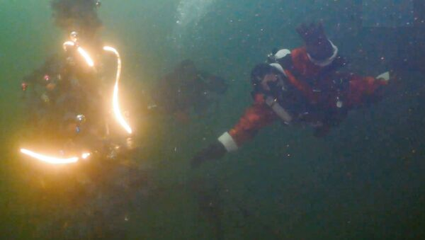 Russia: allestito un albero di Natale  sott'acqua - Sputnik Italia