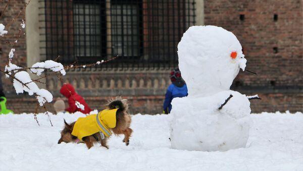 Un pupazzo di neve a Milano - Sputnik Italia