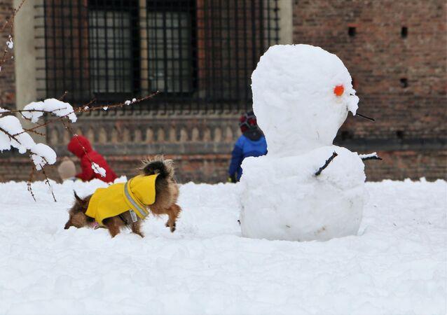 Un pupazzo di neve a Milano