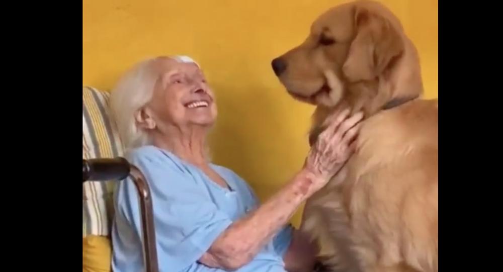 Anziana insieme al suo Golden Retriever