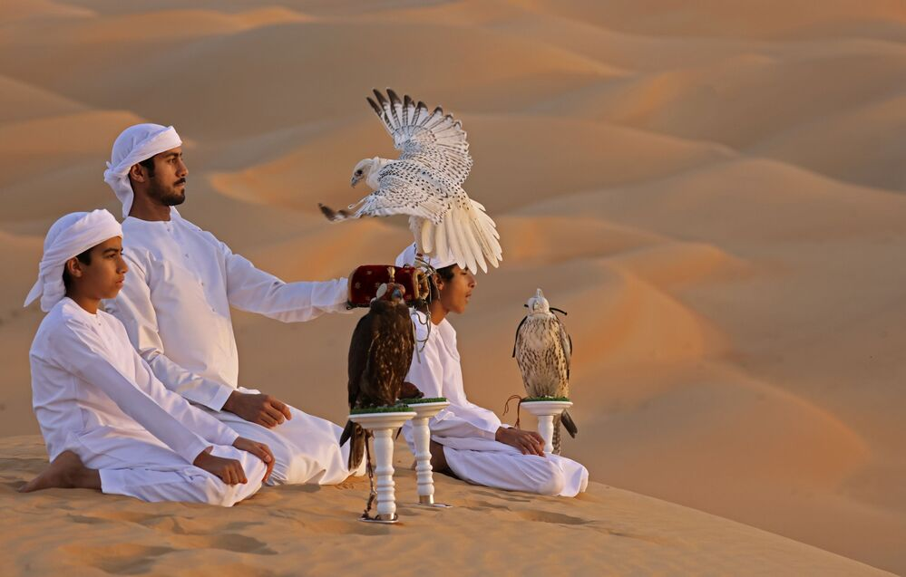 Addestramento dei falchi nel deserto di Liwa, il 9 gennaio 2021