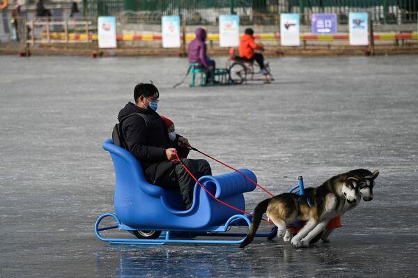 Un uomo e un bambino vanno in slitta sul lago ghiacciato a Pechino, Cina.  - Sputnik Italia