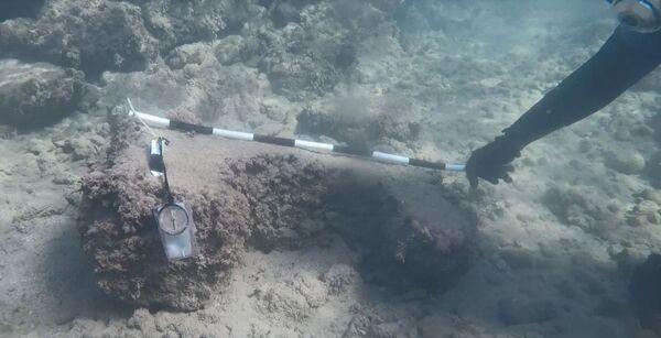 Misurazione del frammento archeologico trovato nell'area acquatica di Tartus - Sputnik Italia