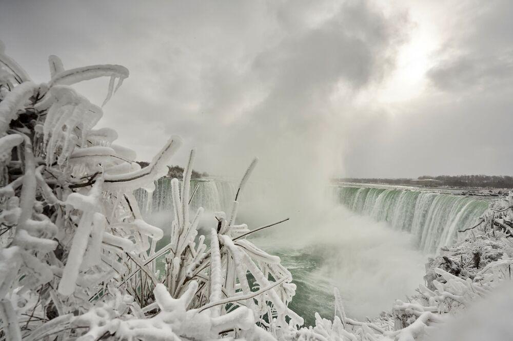 I rami del cespuglio coperto di ghiaccio sullo sfondo di Horseshoe Fall, la più grande delle tre cascate che compongono il complesso del Niagara, Ontario, Canada.