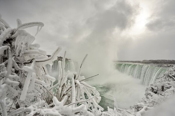 I rami del cespuglio coperto di ghiaccio sullo sfondo di Horseshoe Fall, la più grande delle tre cascate che compongono il complesso del Niagara, Ontario, Canada. - Sputnik Italia