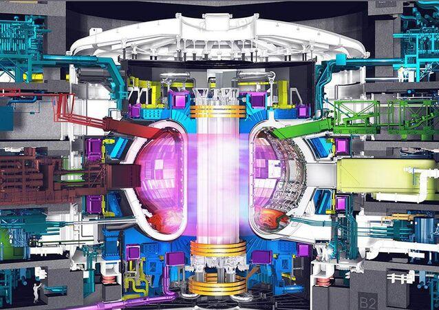 ITER Danieli Telerobot Labs, parte del Danieli Group
