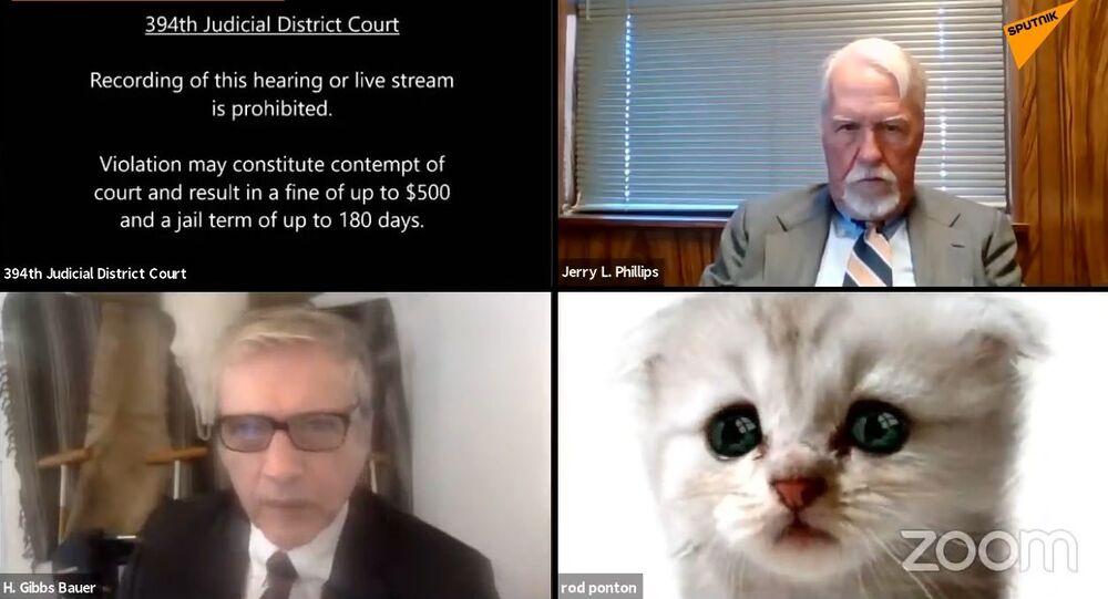 Procuratore Usa dimentica il filtro acceso durante udienza su Zoom