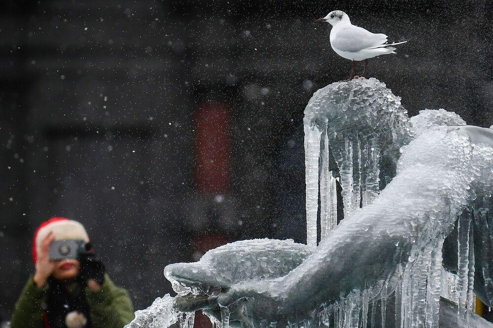 Nel centro di Londra la neve è stata leggera, ma le temperature basse hanno coperto di ghiaccioli le famose statue della fontana di Trafalgar Square mentre gli specchi d'acqua si sono ricoperti di una sottile pellicola di ghiaccio.