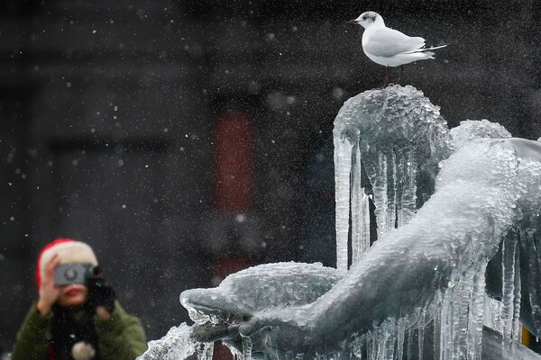 Nel centro di Londra la neve è stata leggera, ma le temperature basse hanno coperto di ghiaccioli le famose statue della fontana di Trafalgar Square mentre gli specchi d'acqua si sono ricoperti di una sottile pellicola di ghiaccio.  - Sputnik Italia