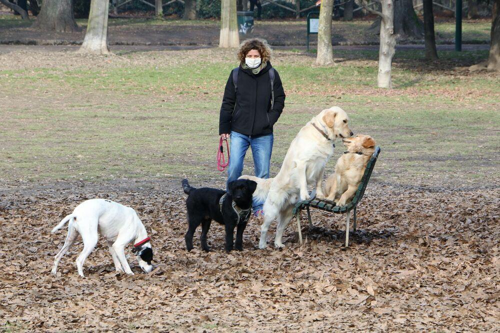 Una donna con i cani in un parco di Milano, Italia