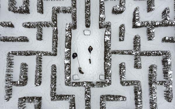 Passanti con cani nel mezzo di un labirinto coperto di neve a Gelsenkirchen, in Germania - Sputnik Italia