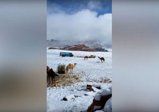 Neve nell'Arabia saudita