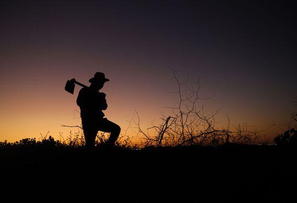 Il profilo di un contadino palestinese che impugna una zappa sullo sfondo di un tramonto a est di Gaza City.  - Sputnik Italia