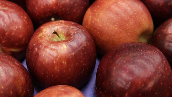 Яблоки сорта Космик Крисп  - Sputnik Italia