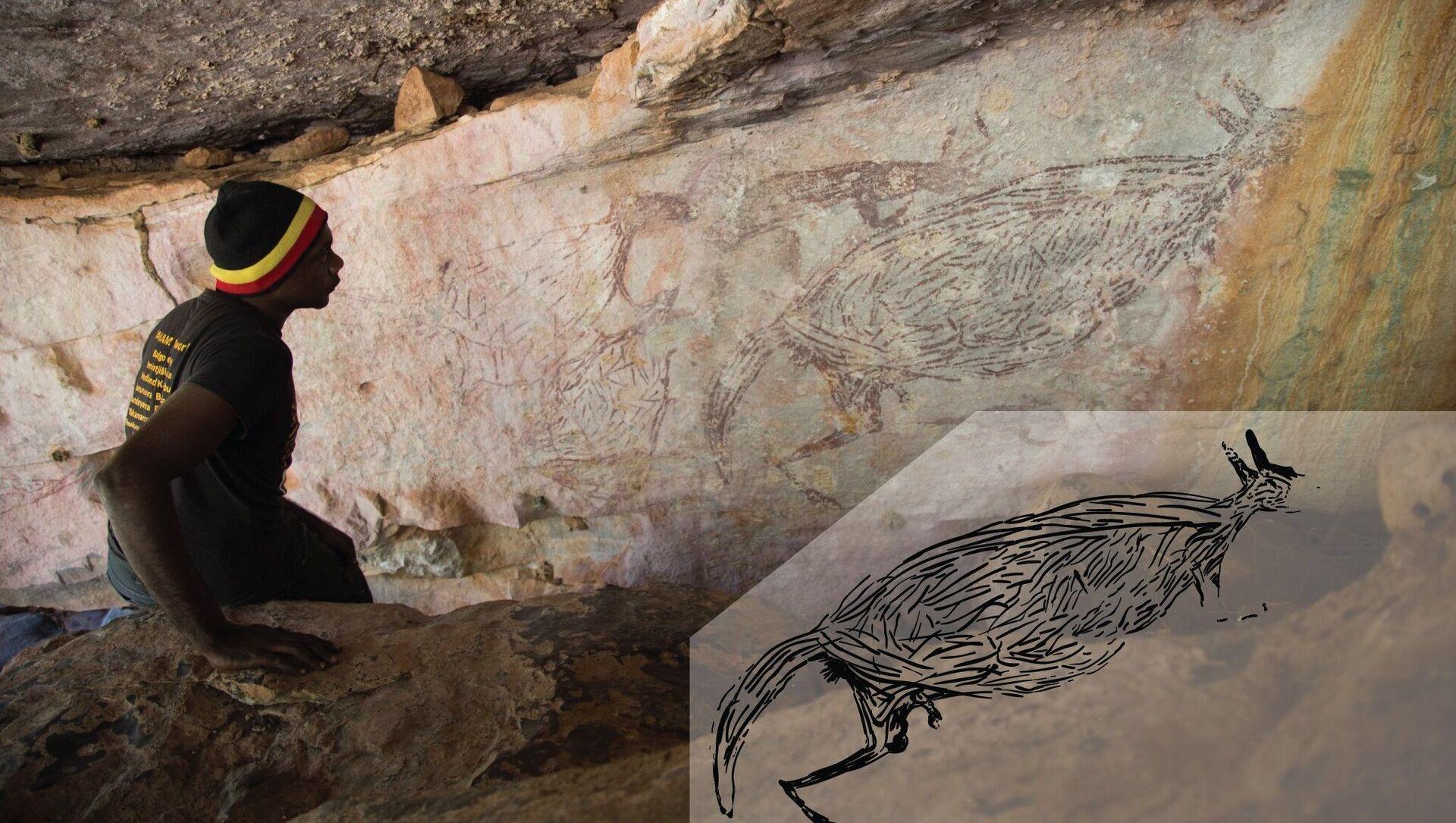 Immagine naturalistica di un canguro, di età superiore ai 12.700 anni - Sputnik Italia, 1920, 23.02.2021