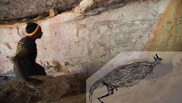 Immagine naturalistica di un canguro, di età superiore ai 12.700 anni - Sputnik Italia