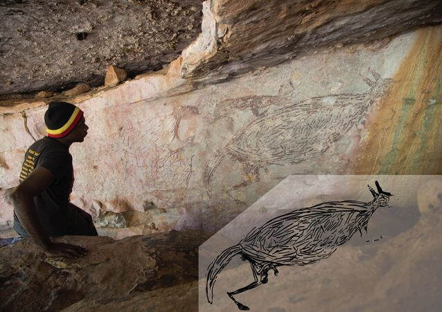 Immagine naturalistica di un canguro, di età superiore ai 12.700 anni