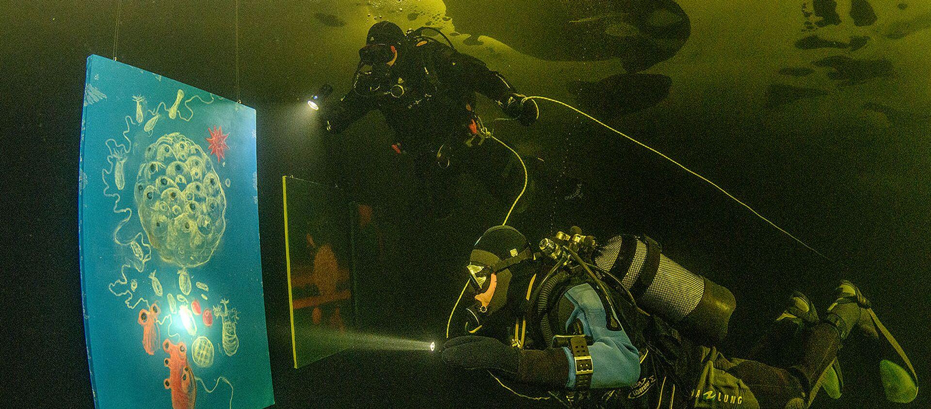 Gli ospiti devono, tuttavia, avere esperienza di immersione subacquea e patentino da sub - Sputnik Italia, 1920, 10.03.2021