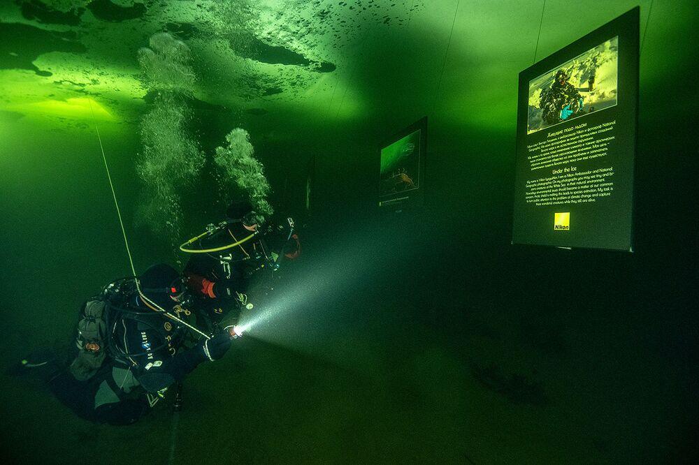 La mostra unica presenta le fotografie di Viktor Lyagushkin scattate sotto il ghiaccio del Mar Bianco