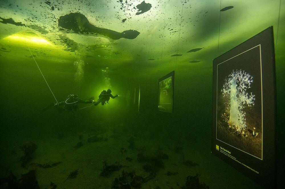 L'obiettivo degli autori è mostrare alle persone il fantastico mondo sottomarino e attirare l'attenzione sul problema dello scioglimento del ghiaccio e del cambiamento climatico