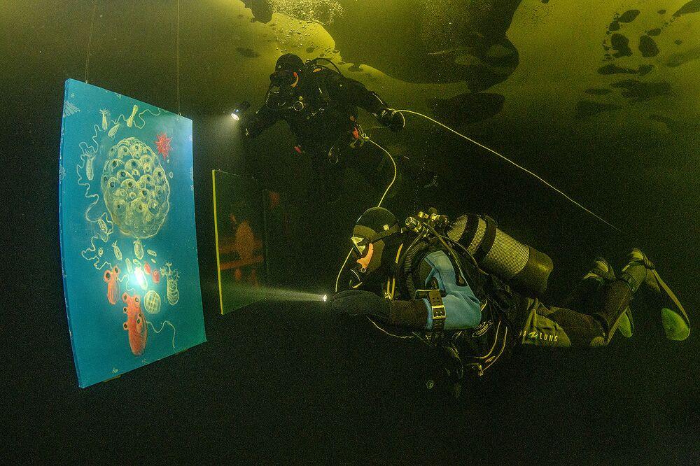 Gli ospiti devono, tuttavia, avere esperienza di immersione subacquea e il patentino da sub