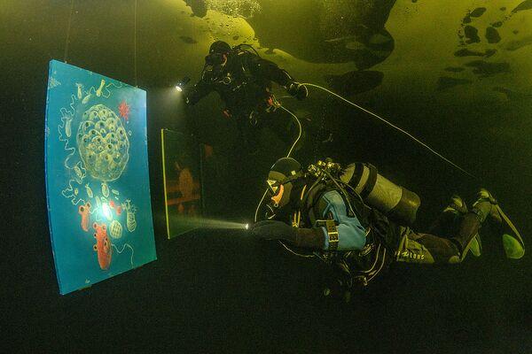 Gli ospiti devono, tuttavia, avere esperienza di immersione subacquea e il patentino da sub - Sputnik Italia
