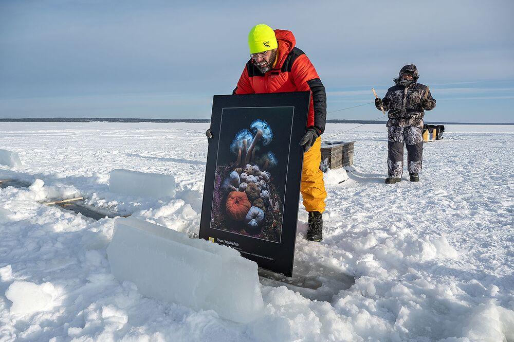 La prima mostra subacquea al mondo oltre il Circolo Polare Artico nel Mar Bianco