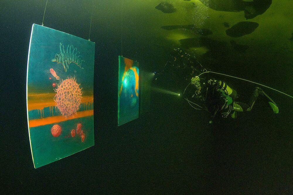Questa è la prima galleria d'arte subacquea al mondo