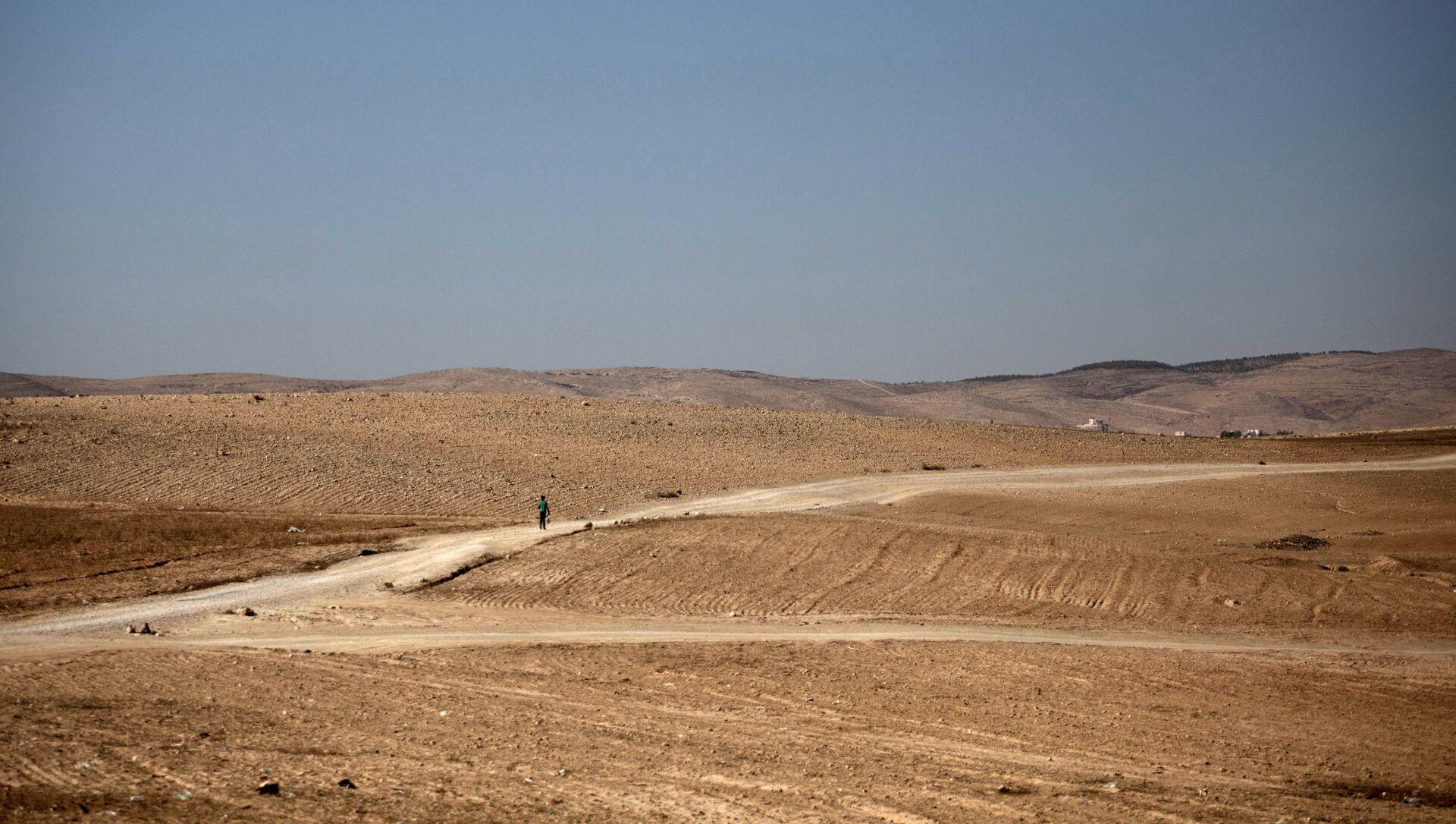 Israele deserto Negev - Sputnik Italia, 1920, 10.03.2021