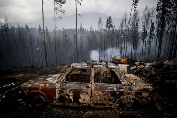 Un'auto bruciata durante gli incendi boschivi a Las Golondrinas, Argentina - Sputnik Italia