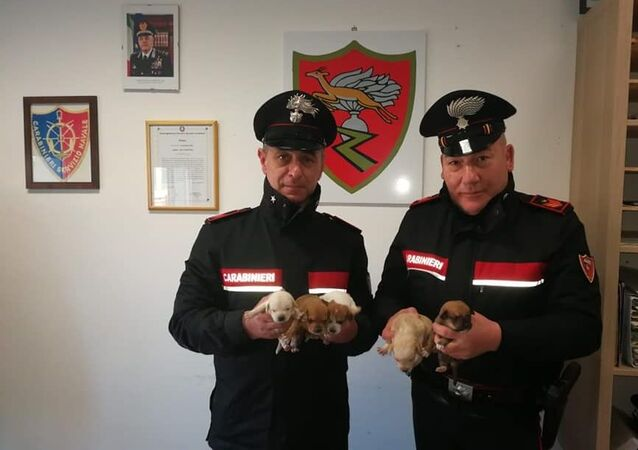 Carabinieri salvano piccoli cuccioli