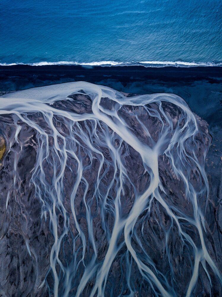La foto Vene glaciali del fotografo indiano Dipanjan Pal, che ha conquistato il 1 posto nella categoria L'arte della Natura del concorso World Nature Photography Awards 2020